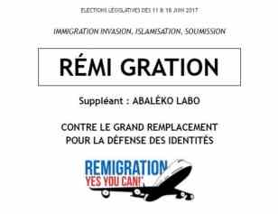 remigration